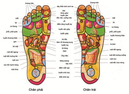 Dầu cù là trắng massage chân Wang Boran