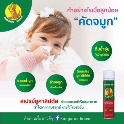 Xịt phòng tinh dầu Kangaroo Eucalyptus Oil Spray ảnh 8